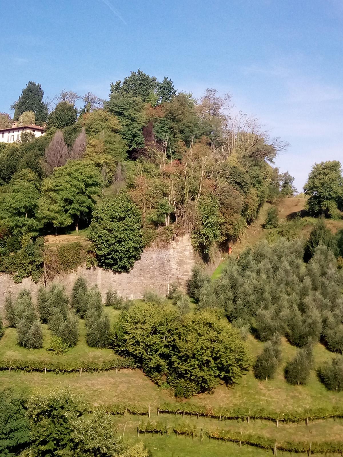 Perico-Renato-Bergamo, Città Alta - Mura venete - Restauro 17