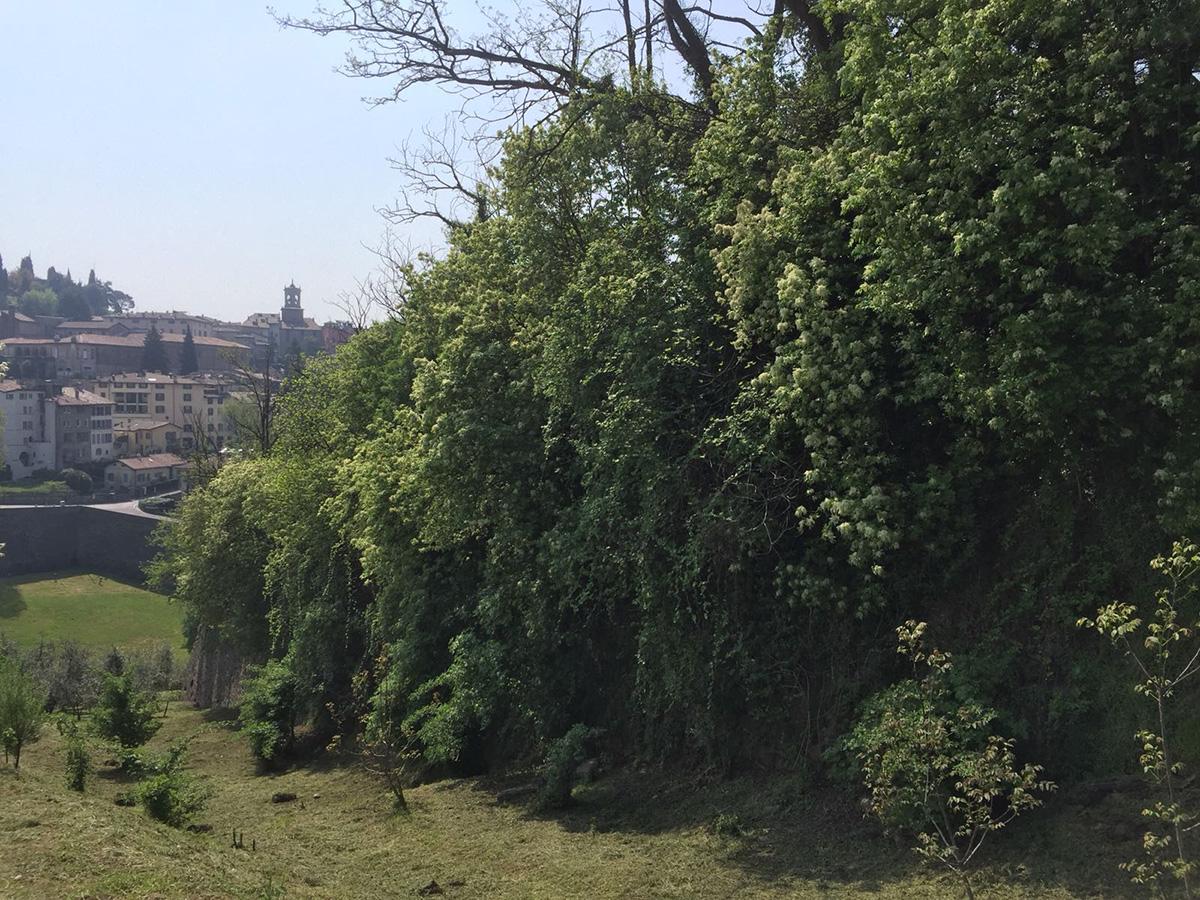 Perico-Renato-Bergamo, Città Alta - Mura venete - Restauro 18